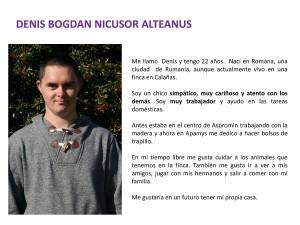 DENIS BOGDAN NICUSOR ALTEANUS