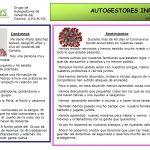 Autogestores Informa nº 16
